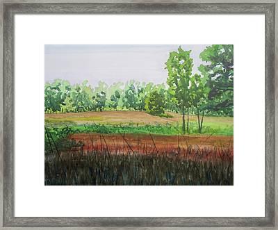 Prairie Grass Field Framed Print by Bethany Lee