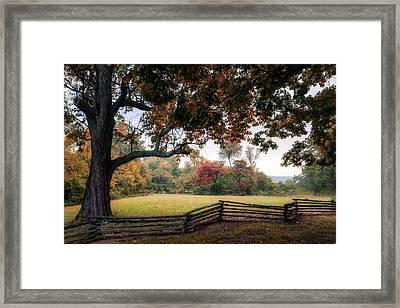 Prairie Grove Fence Line Framed Print by James Barber