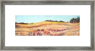 Prairie IIi Framed Print by Lucinda  Hansen