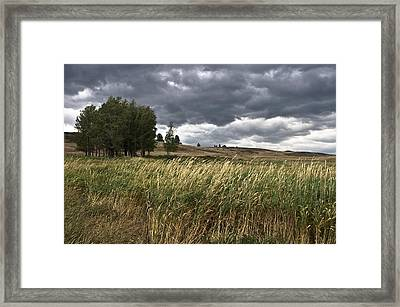 Prairie, Lost Trail Wildlife Refuge Framed Print