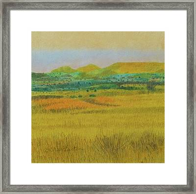 Prairie Reverie Framed Print