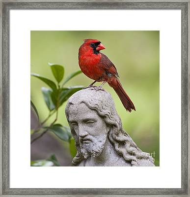 Praise The Lord Framed Print by Bonnie Barry