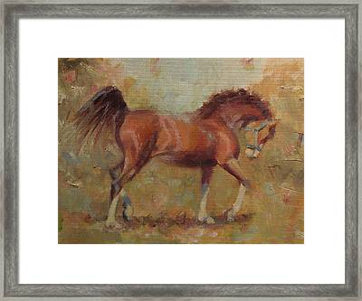 Prancing Bay Framed Print by Sarah Parks