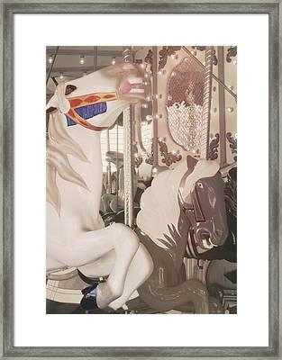 Prancing Pony Framed Print by JAMART Photography