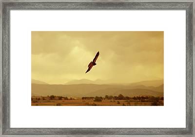 Prarie Flyer Framed Print by Marilyn Hunt