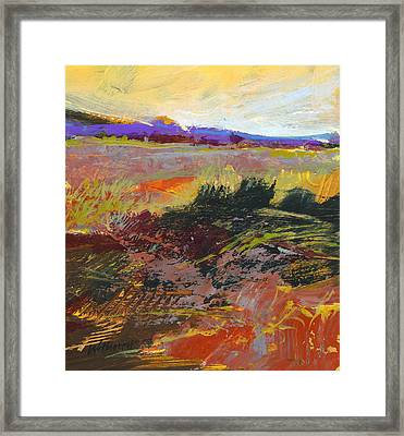 Prarie Sketch Framed Print by Dale  Witherow