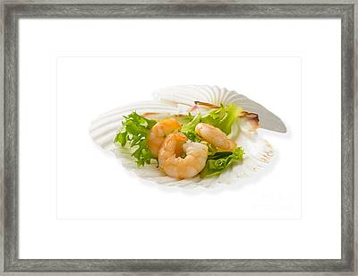 Prawn Appetizer Framed Print