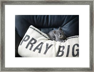 Framed Print featuring the photograph Pray Big by Linda Mishler