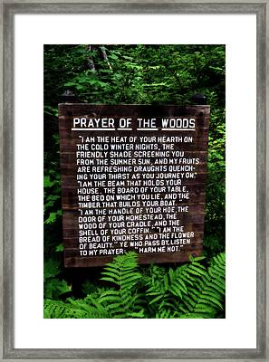 Prayer Of The Woods Framed Print by Michelle Calkins