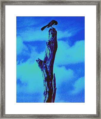Praying Black Bird Grace In Nature Framed Print