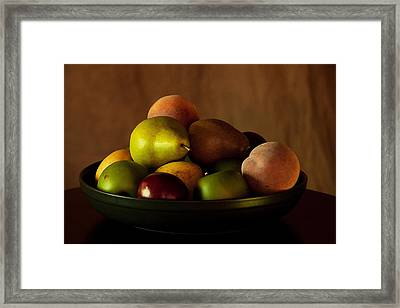 Precious Fruit Bowl Framed Print by Sherry Hallemeier