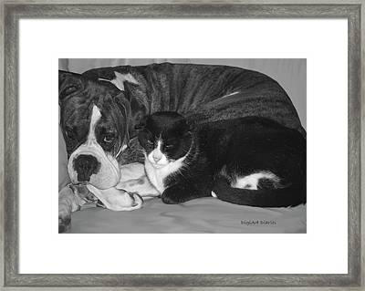 Precious Pals Framed Print by DigiArt Diaries by Vicky B Fuller