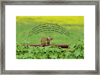 Precious Scripture Framed Print by Debby Pueschel
