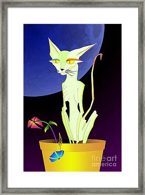 Precious The Cat Framed Print