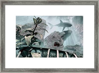 Predator Framed Print by Richard Rizzo