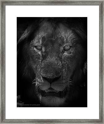 Preditor Eyes Framed Print