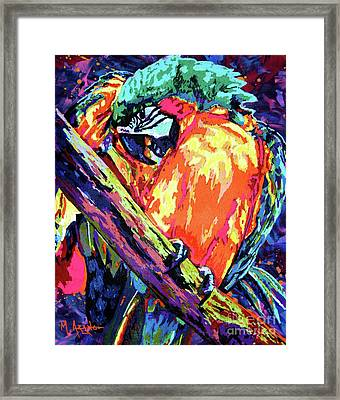 Preening Macaw Framed Print
