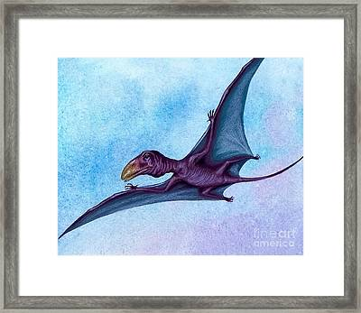 Prehistoric Bird Framed Print