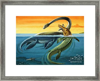 Prehistoric Creatures In The Ocean Framed Print
