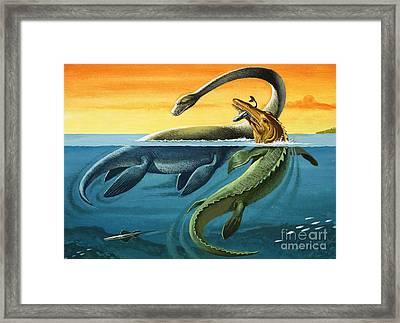 Prehistoric Creatures In The Ocean Framed Print
