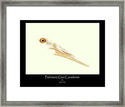prehistoric Grus Framed Print