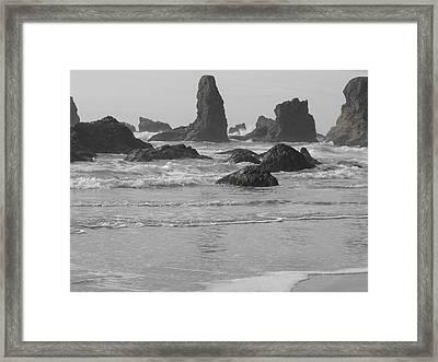 Prehistoric Shore Framed Print