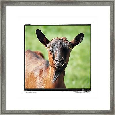 Preliminary Remarks Framed Print