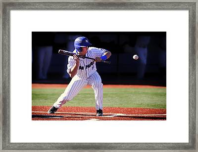 Preparing To Bunt Framed Print by Mountain Dreams