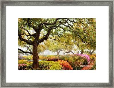 Prescott Park #2 Framed Print