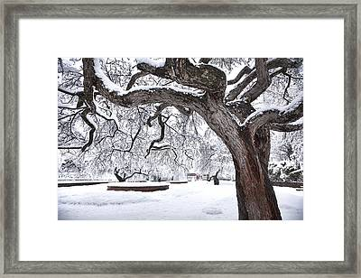 Prescott Park Winter Garden Framed Print by Eric Gendron