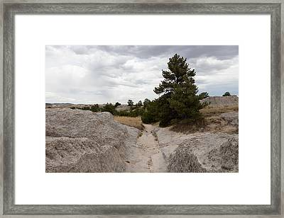Framed Print featuring the photograph Preserved Wagon Ruts Of The Oregon Trail On The North Platte River by Carol M Highsmith