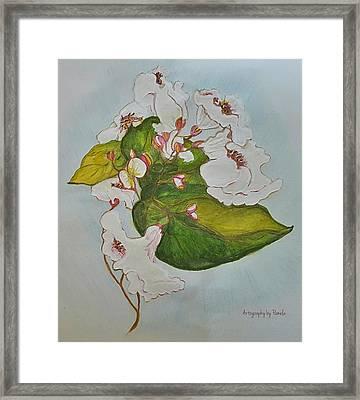 Pretender Orchid Framed Print