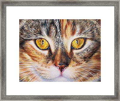 Pretty Alice Framed Print by Elena Kolotusha