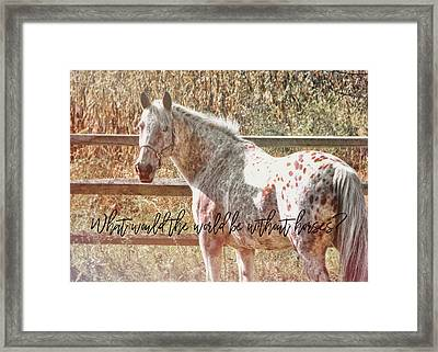 Pretty Appaloosa Quote Framed Print by JAMART Photography