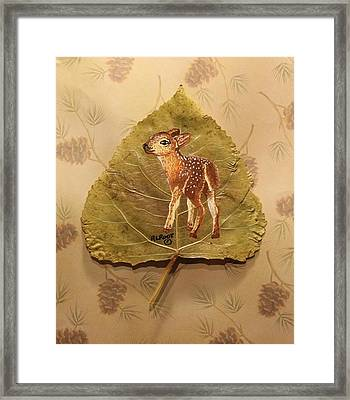 Pretty Baby Deer Framed Print