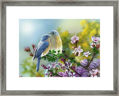 Pretty Blue Birds Framed Print