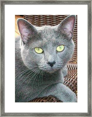 Pretty Eyes Framed Print