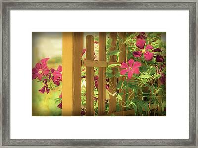 Pretty Flower Garden Framed Print