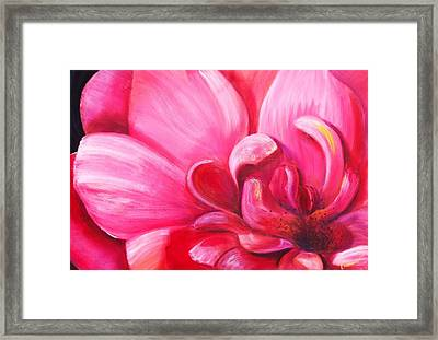 Pretty In Pink Framed Print by Dana Redfern