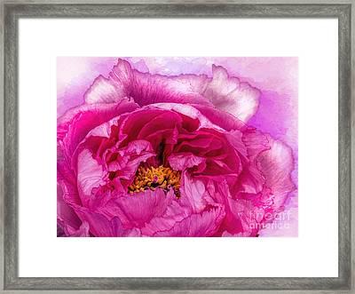 Pretty In Pink Framed Print by Gillian Singleton