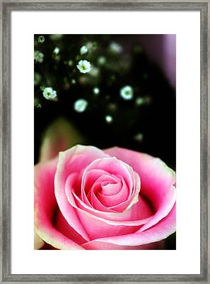 Pretty In Pink Framed Print by Mandy Wiltse
