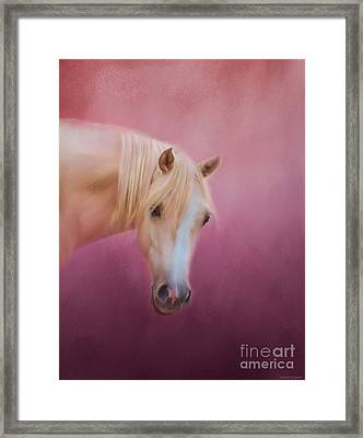 Pretty In Pink - Palomino Pony Framed Print by Michelle Wrighton