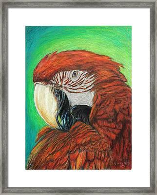 Pretty In Red Framed Print by Angela Finney