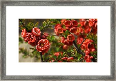 Framed Print featuring the photograph Pretty In Red by Cameron Wood