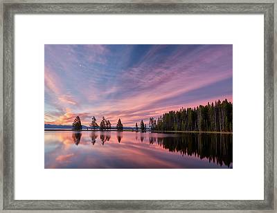 Pretty Is Pink Framed Print