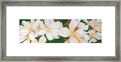 Pretty Maids Framed Print by Lucinda  Hansen