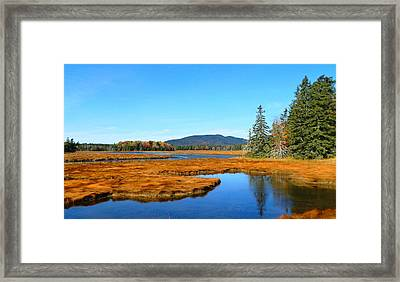 Pretty Marsh Framed Print