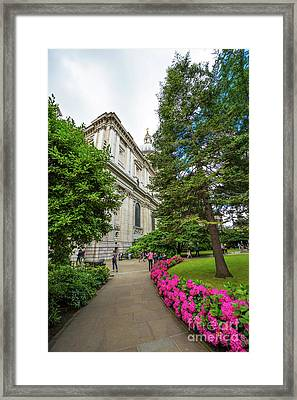 Pretty Path Framed Print by Svetlana Sewell