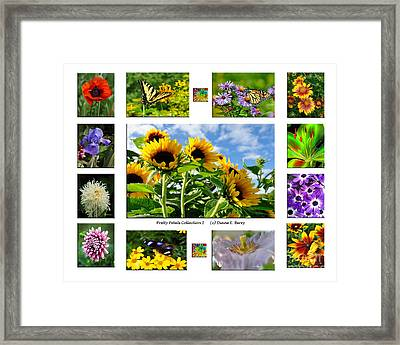 Framed Print featuring the photograph Pretty Petals Collection I by Diane E Berry