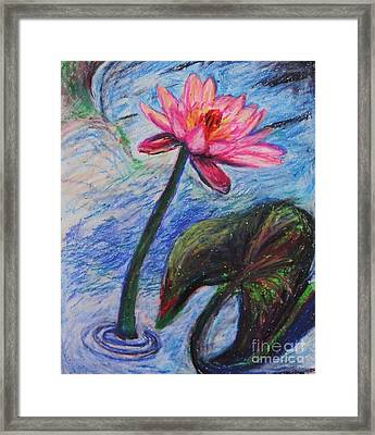 Pretty Pink In The Pond Framed Print by Emily Michaud